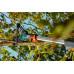 Высоторез Гардена телескопический садовый Gardena StarCut 410 plus